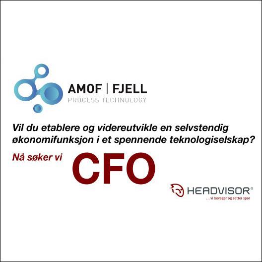 Søker etter CFO